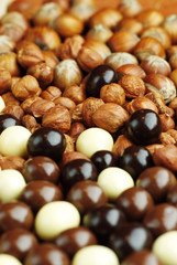 Close-up of hazelnuts and white and brown candies.
