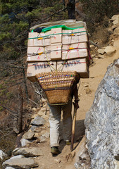 Porters carry heavy load in the Himalaya