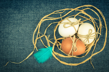 Eggs in nest, vintage card, your text,unusual, toned