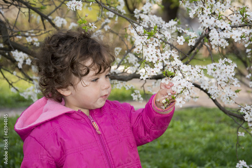 Spring in the garden a little girl holding a cherry branch.