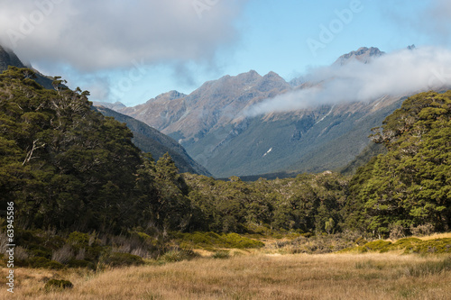 Greenstone valley in Fiordland National Park, New Zealand