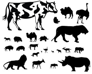 African Animals vector