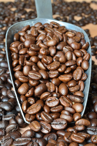 Arabica Coffee beans medium roasted in a scoop