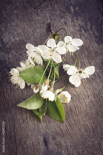 cherry blossom flower on old wood table