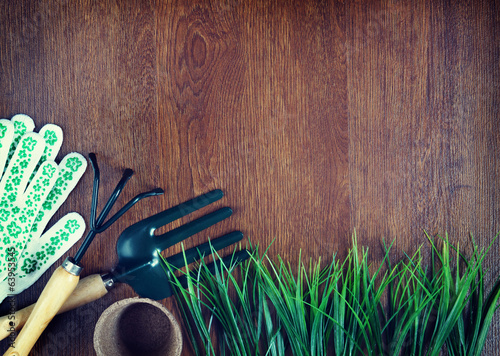 Garden tools over wooden background