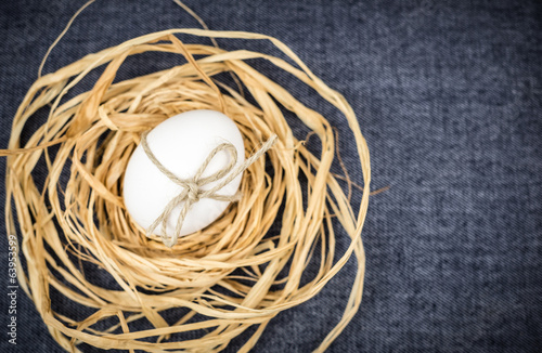 Egg in nest blue background, still life, your text, unusual