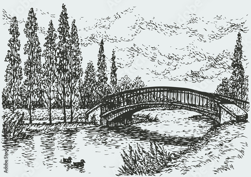 Vector landscape. Bridge over river and poplars along the road