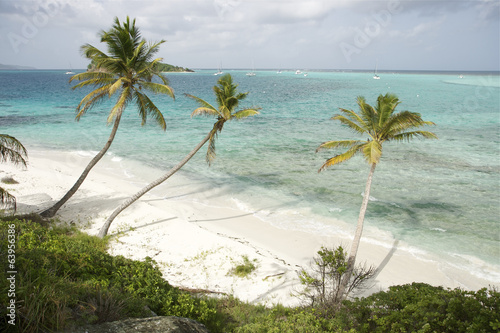 Papiers peints Caraibes Saint Vincent and The Grenadines Tobago Cays Caribbean 47