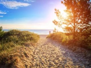 Instant - Strand