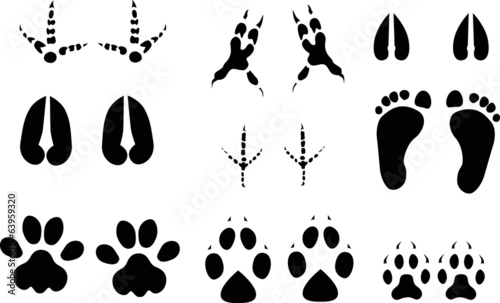 set of nine animals and birds black tracks