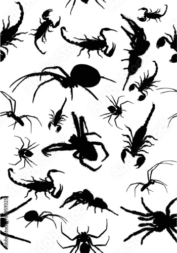 seamles background from black spiders and scorpions