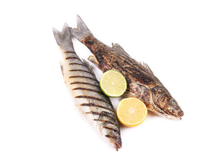 Two grilled seabass.
