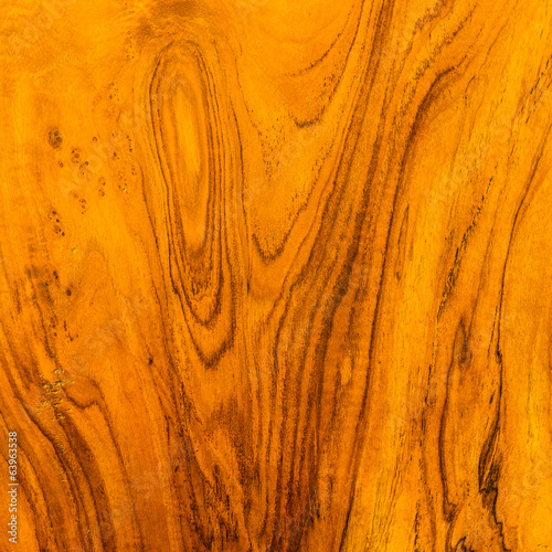 Texture and pattern of gold teak wood