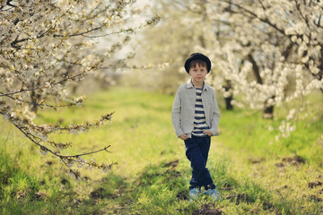 in nature in a flowering garden a little boy in a blue shirt and