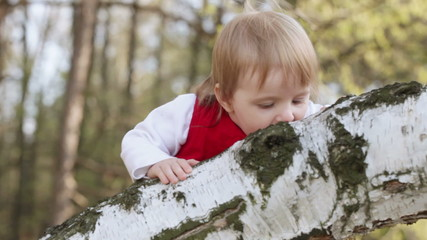 Year-old child on birch