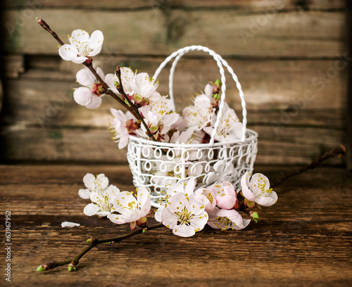 apricot blossoms in a metal basket