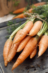 Fresh carrot with green tops