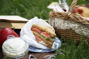 Salmon sandwich for picnic outdoor
