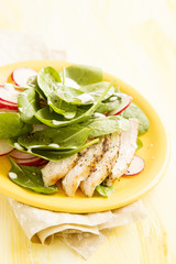 Spring salad with turkey, baby spinach and eggs