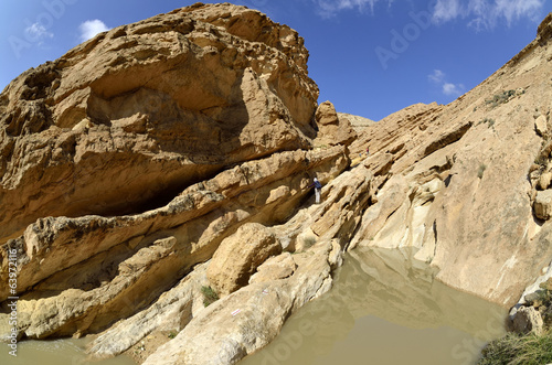 Desert wadi in Negev at spring, Israel.