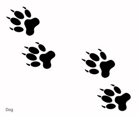 Animal footprints, Dog