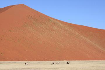 Big dune, 4 Orix foreground. Sossusvlei Namibia