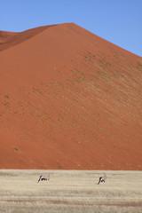 Big dune, 2 Orix foreground 3. Sossusvlei Namibia