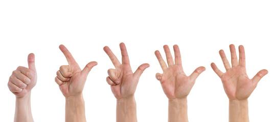 Hand zählt von eins bis fünf
