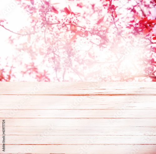 High key background of pink spring blossom