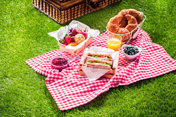 Healthy picnic for a summer vacation