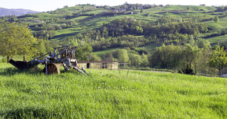 Oltrepo Pavese vineyard color image