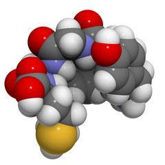 Enkephalin (Met-enkephalin) molecule.