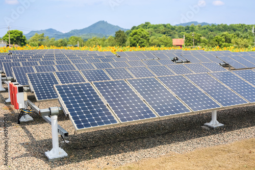 solar panels and sunflower farmland background
