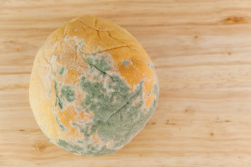 Moldy bread on wood background