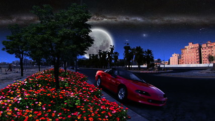 garden and car in city at night