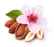 Almonds kernel with flower