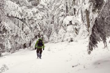 Adventure man walking in forest in winter