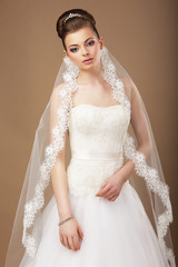 Elegance. Attractive Bride in Veil with Openwork Lace