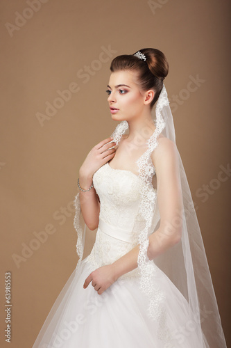Espousal. Profile of Elegant Stylish Bride with Veil