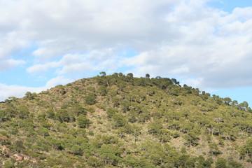 une colline