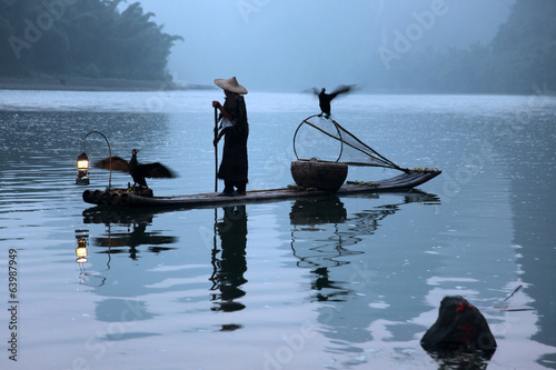 Chinese man fishing with cormorants birds, traditional fishing u