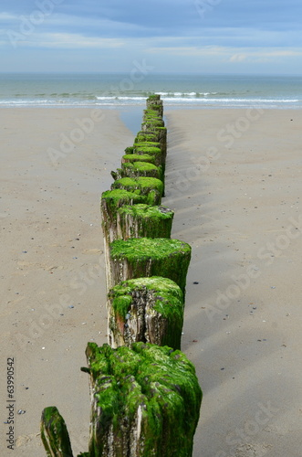 Wooden breakwaters on the beach in Nieuw Haamstede Zeeland