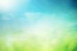 Leinwanddruck Bild - Summer sunny field bokeh