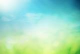 Summer sunny field bokeh