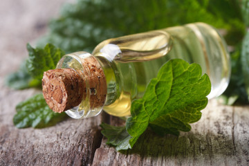 Aromatic oils Lemon balm in a glass bottle on old table