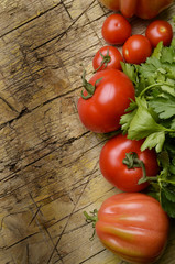 Solanum lycopersicum Pomodoro Tomate Tomat