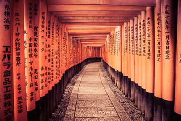 Leading Line To The Kyoto Gates