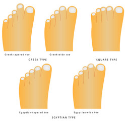 The most common variants of the foot and toes