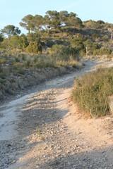 un chemin de terre