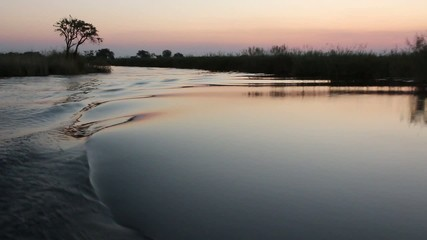 Scenic view from a boat traveling on the river, Caprivi region